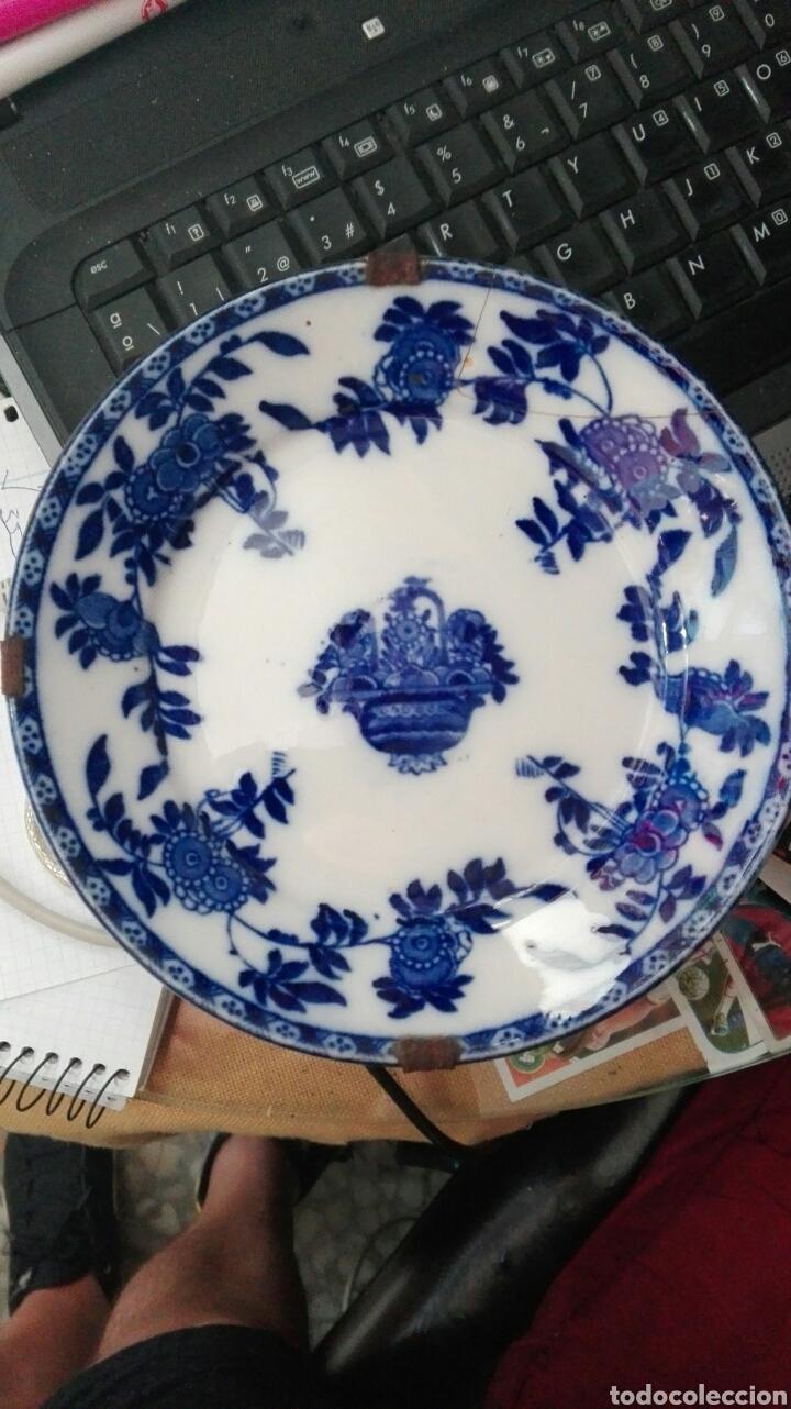 PLATO SERIE INDIA AZUL (Antigüedades - Porcelanas y Cerámicas - San Juan de Aznalfarache)