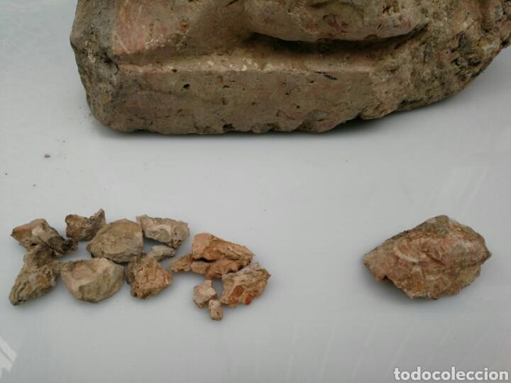 Antigüedades: ANTIGUA BASE BASA DE COLUMNA MÁRMOL ROJO - Foto 7 - 87591319