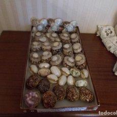 Antigüedades: LOTE DE 35 MONEDEROS O PASTILLEROS DE CONCHAS DE NACAR AUTENTICA. Lote 90207900