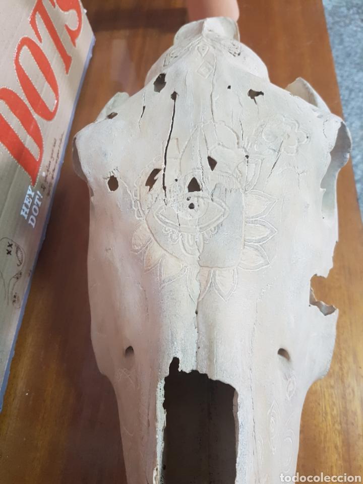Antigüedades: Cráneo de caballo tallado. Raro - Foto 3 - 91645649