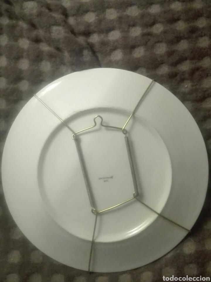 Antigüedades: plato sargadelos - Foto 2 - 93628288