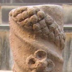 Antigüedades: GARGOLA VEGETAL. Lote 96764283