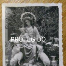 Antigüedades: BARCARROTA, BADAJOZ. PRECIOSA Y ANTIGUA FOTO REBAÑO DE MARIA. Lote 98512535