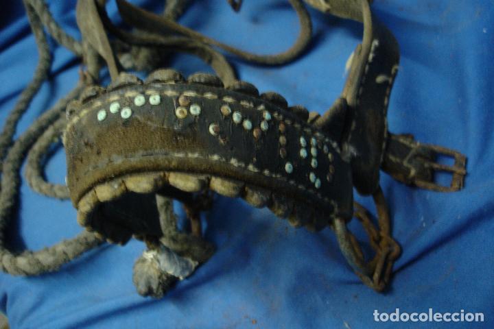 Antigüedades: -ANTIGUA CABEZANA, CABEZADA, CABEZAL DE CABALLERÍA CON CUERDA Y CADENA - ETNOLÓGICO - Foto 8 - 99998395