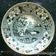 Antigüedades: PLATO DE SARGADELOS , LA CORUÑA , VIGO, LUGO,SANTIAGO,ORENSE, PONTEVEDRA,MADRID,BARCELONA. Lote 101240035