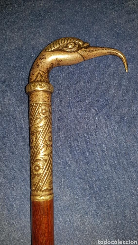 Antigüedades: Antiguo bastón en plata con cabeza de ave - Foto 2 - 101282096