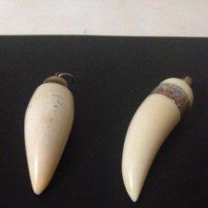 Antigüedades: (2) ANTIGUOS DIENTES DE ORCA DE MARFIL . Lote 103461543