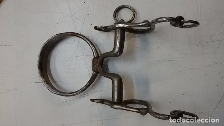 Antigüedades: Pequeño bocado con barbada de argolla, embocadura de 10 cm - Foto 2 - 104063051