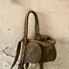 Antigüedades: CABEZADA CON BOCADO - EN VENTA SÓLO 6 DIAS HASTA EL 29/11 A LAS 17 HORAS. Lote 104202695