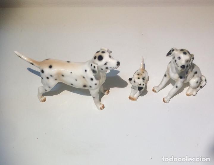 Antigüedades: Familia de tres figuras o perros Dálmatas en porcelana, años 70. - Foto 4 - 104280968