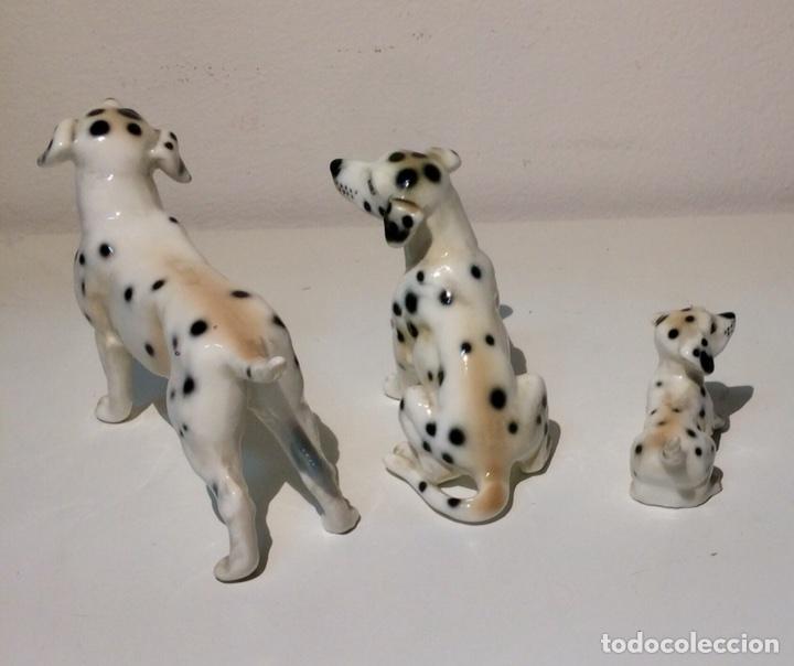 Antigüedades: Familia de tres figuras o perros Dálmatas en porcelana, años 70. - Foto 6 - 104280968