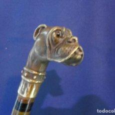 Antigüedades: BASTON PERRO DE BRONCE. Lote 104720879
