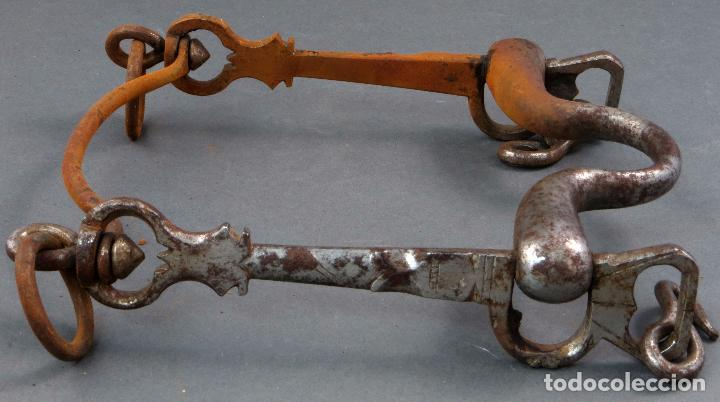 Antigüedades: Bocado para caballos de hierro forjado principios del siglo XIX - Foto 7 - 104796447