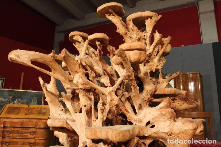 Antigüedades: Florero indonesiano en raíz de manglar - Foto 6 - 104948899