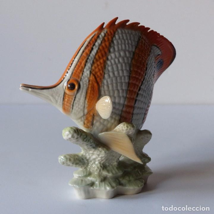 Antigüedades: Figura de porcelana Göbel. Pez. Alemania 1960 - 1970 - Foto 5 - 104958731