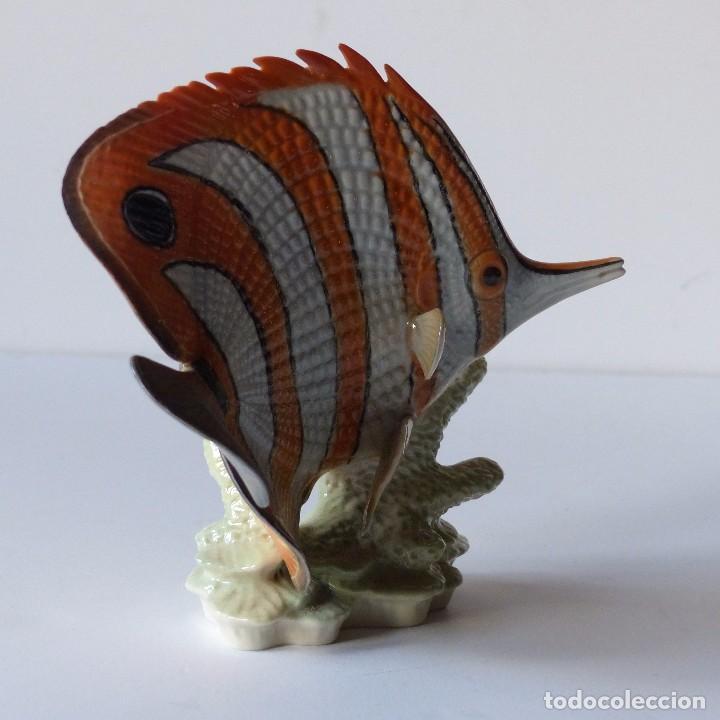 Antigüedades: Figura de porcelana Göbel. Pez. Alemania 1960 - 1970 - Foto 9 - 104958731