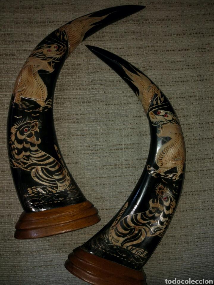 Antigüedades: Cuernos de bufalo tallados - Foto 5 - 105029375