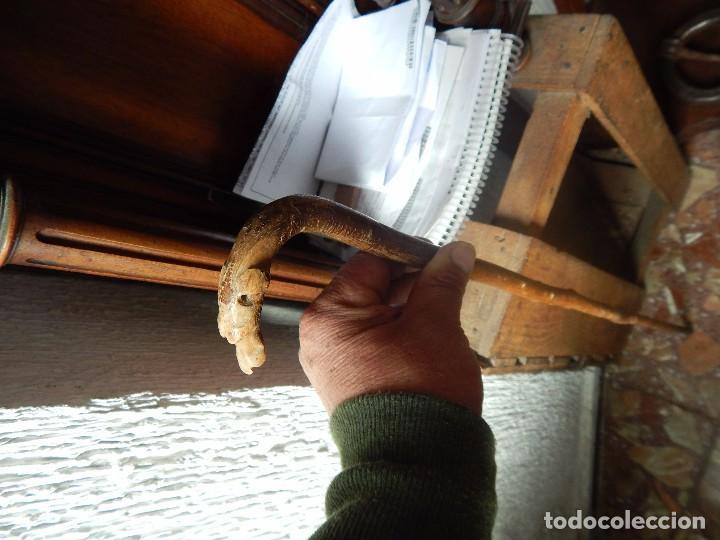Antigüedades: bello baston con estilo y con época - Foto 3 - 105200515