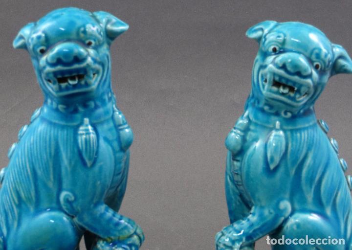 Antigüedades: Pareja Furias Foo cerámica esmaltada azul China S XX - Foto 2 - 175027738