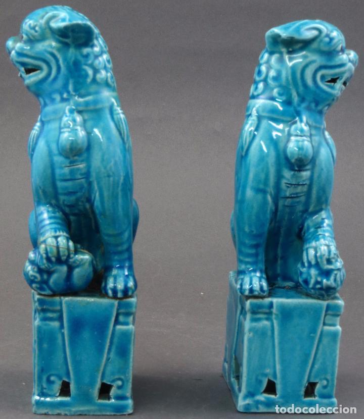 Antigüedades: Pareja Furias Foo cerámica esmaltada azul China S XX - Foto 3 - 175027738