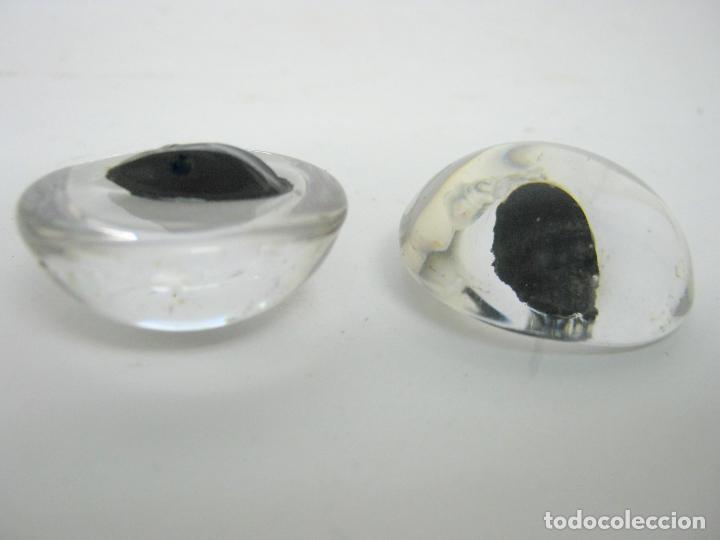 Antigüedades: pareja antiguos ojos cristal taxidermia Toro Bravo - Foto 2 - 107603595