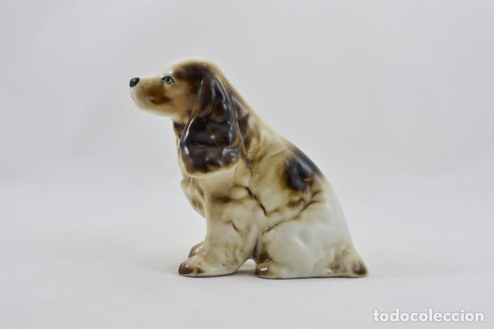 Antigüedades: Perro de porcelana. Cocker de caza - Foto 2 - 109141523