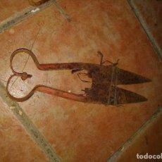Antigüedades: TIJERA DE ESQUILAR, RAPAR OVEJAS. Lote 109433735