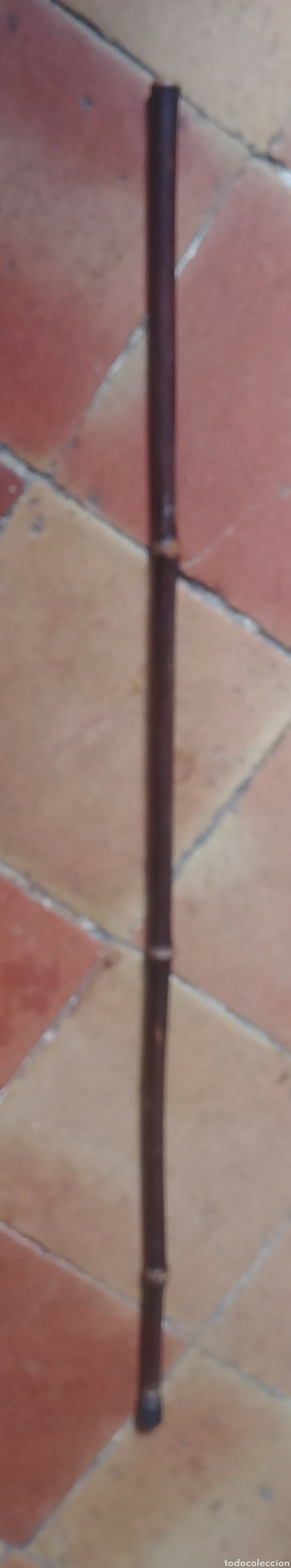 Antigüedades: Baston bambú s xix. - Foto 3 - 113091956