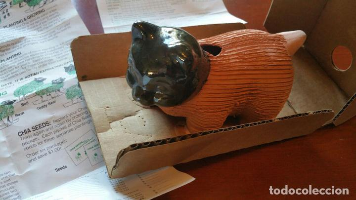 Antigüedades: CHIA PET KITTEN, GATO DE BARRO PARA PLANTAR CESPED AÑOS 80 - Foto 4 - 113413435