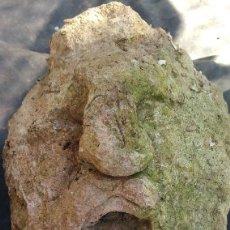 Antigüedades: ESCULTURA ANTIGUA EN PIEDRA CARA SINIESTRA - 18KG - 65 X 34 X 36 CM. Lote 113636079