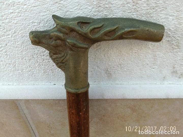 Antigüedades: BASTÓN CABEZA CIERVO - Foto 3 - 114036875