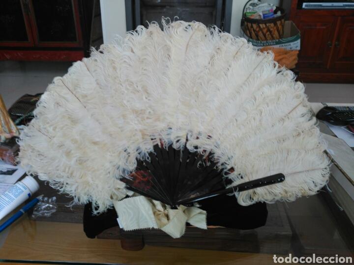 Antigüedades: Abanico Pericón Plumas avestruz. - Foto 5 - 114893240