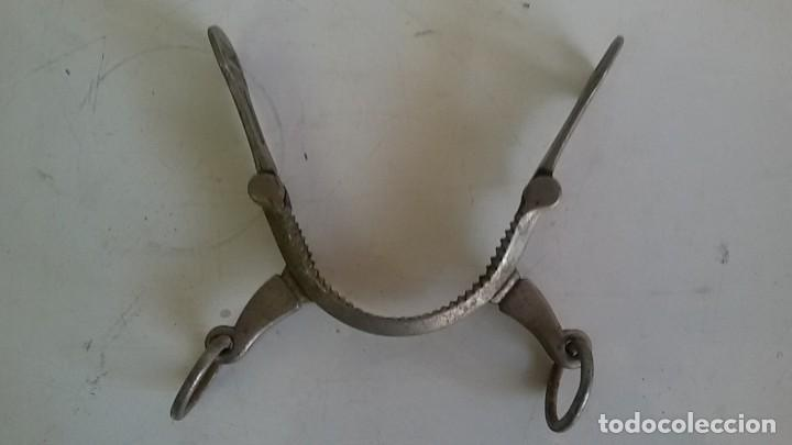 Antigüedades: Serreta para caballo. - Foto 2 - 116674907
