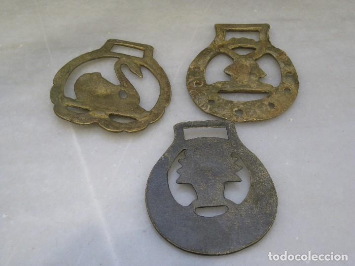 Antigüedades: 3 placas antiguas de bronce para correaje de caballo - Foto 4 - 116684335
