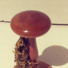 Antigüedades: ANTIGUO SOMBRERERO DE MADERA NOBLE. Lote 117344107