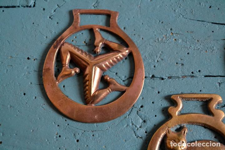 Antigüedades: LOTE DE DE 3 PIEZAS DE BRONCE * JAEZ * CAMAS DE FRENO PARA CABALLO * GATO * TRISQUEL * TRISQUELION - Foto 3 - 119425015