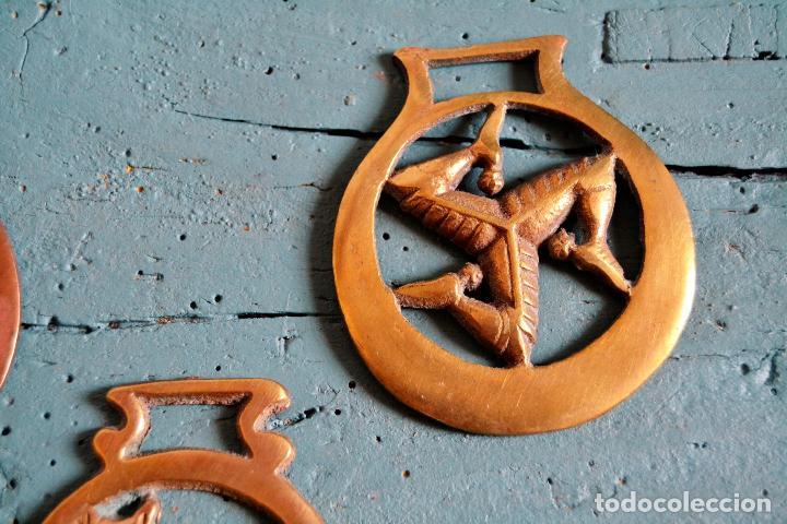 Antigüedades: LOTE DE DE 3 PIEZAS DE BRONCE * JAEZ * CAMAS DE FRENO PARA CABALLO * GATO * TRISQUEL * TRISQUELION - Foto 4 - 119425015