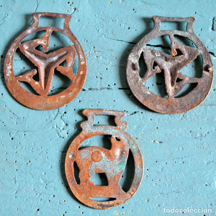 Antigüedades: LOTE DE DE 3 PIEZAS DE BRONCE * JAEZ * CAMAS DE FRENO PARA CABALLO * GATO * TRISQUEL * TRISQUELION - Foto 5 - 119425015