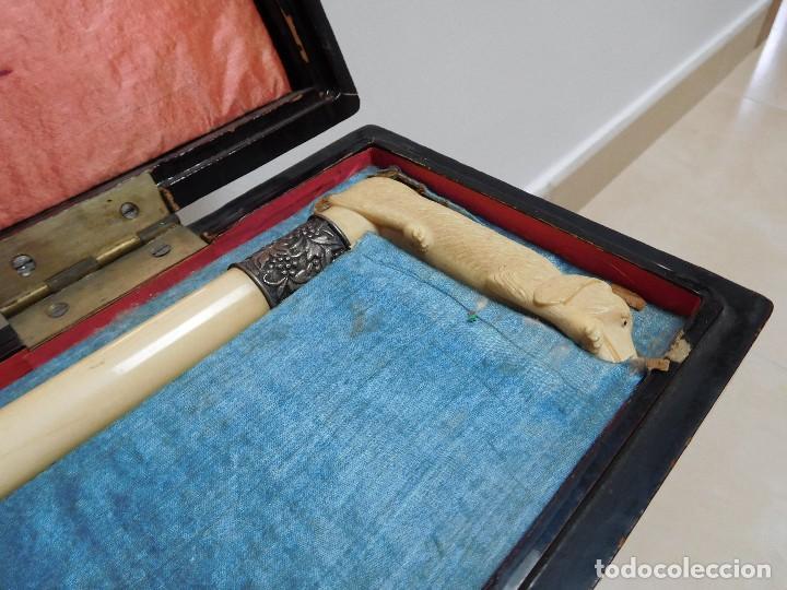 Antigüedades: Bastón de marfil antiguo con su caja lacada original finales de siglo XIX - Foto 7 - 120236743