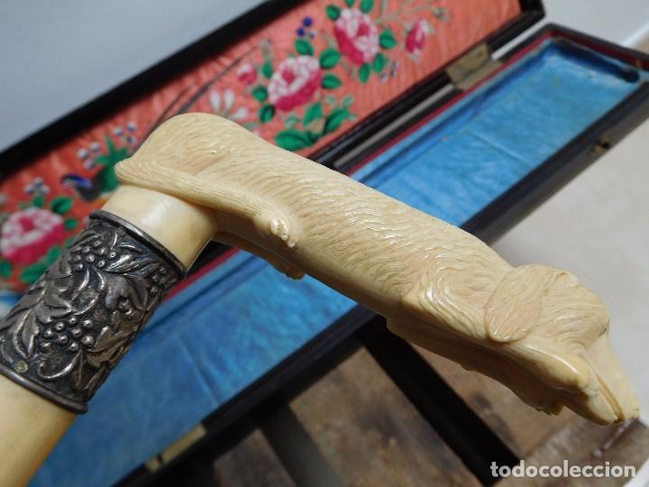 Antigüedades: Bastón de marfil antiguo con su caja lacada original finales de siglo XIX - Foto 24 - 120236743