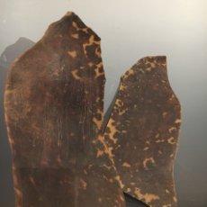 Antigüedades: 2 PIEZAS DE CAREY ANTIGUOS. Lote 121589379
