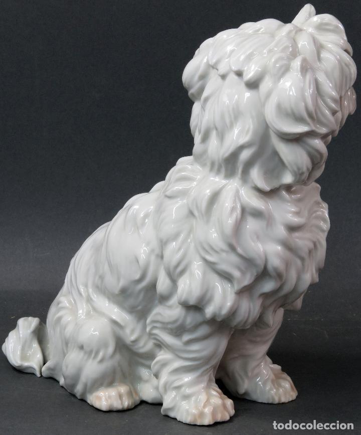 Antigüedades: Perro Terrier en porcelana blanca de Algora siglo XX - Foto 4 - 122671799