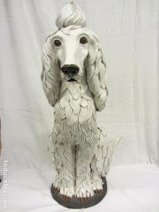 Antigüedades: Perro de gran tamaño en ceramica - Foto 2 - 122706927