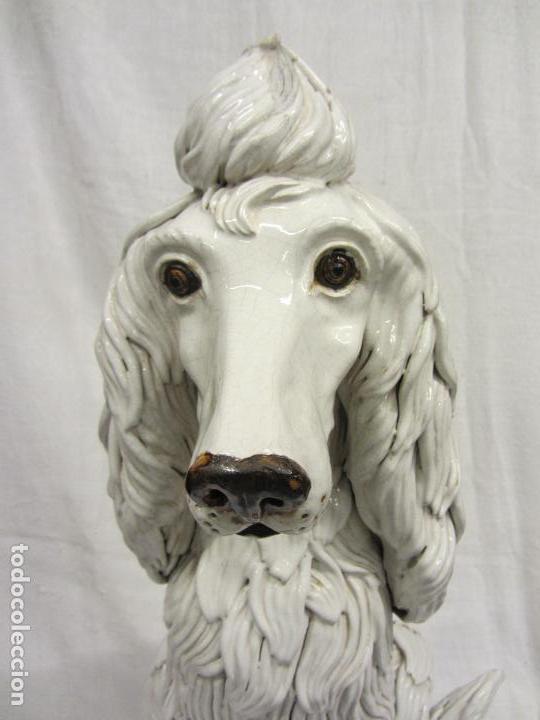 Antigüedades: Perro de gran tamaño en ceramica - Foto 3 - 122706927