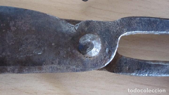 Antigüedades: TIJERAS DE ESQUILAR CON CONTRAMARCA DE HERRERO CARDONA DEL XIX - Foto 5 - 127935859