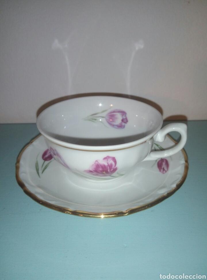 TAZA Y PLATO CAFE SANTA CLARA (Antigüedades - Porcelanas y Cerámicas - Santa Clara)