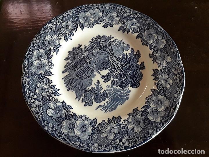 Antigüedades: Plato porcelana Wedgwood - Foto 5 - 128049759