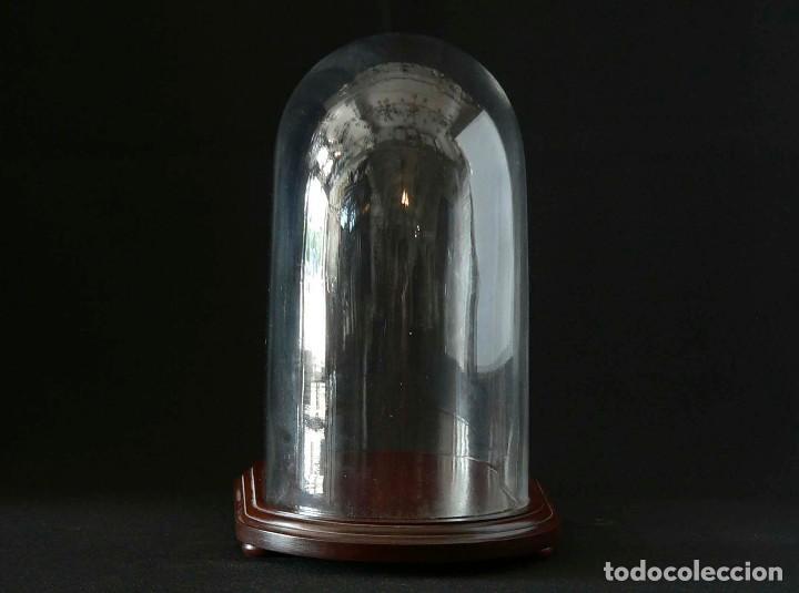 Antigüedades: FANAL DE CRISTAL CON BASE DE CAOBA - Foto 2 - 128553075