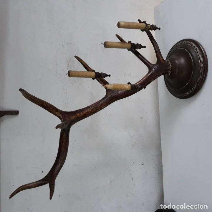 Antigüedades: Candelabro de sobremesa para 4 velas, sobre asta o cuerno de ciervo, 62 cm altura y 56cm de ancho - Foto 2 - 130991280