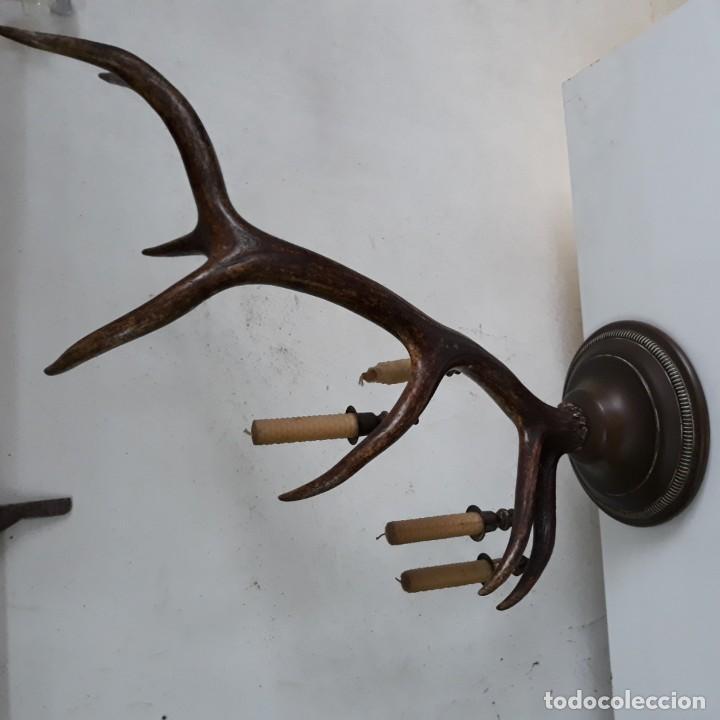 Antigüedades: Candelabro de sobremesa para 4 velas, sobre asta o cuerno de ciervo, 62 cm altura y 56cm de ancho - Foto 4 - 130991280